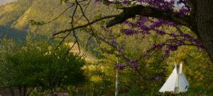 Tipis Drôme - Les toiles du berger